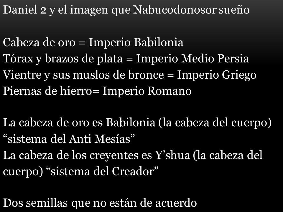 Daniel 2 y el imagen que Nabucodonosor sueño Cabeza de oro = Imperio Babilonia Tórax y brazos de plata = Imperio Medio Persia Vientre y sus muslos de