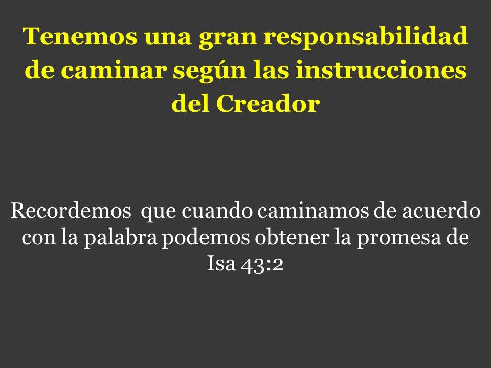 Tenemos una gran responsabilidad de caminar según las instrucciones del Creador Recordemos que cuando caminamos de acuerdo con la palabra podemos obte