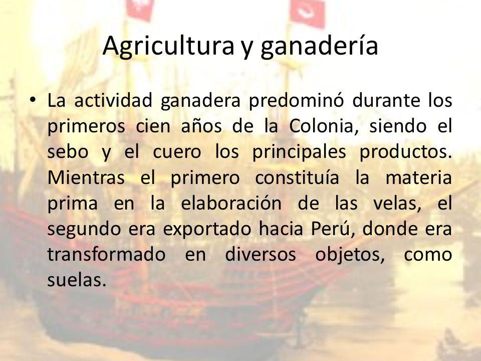 Agricultura y ganadería La actividad ganadera predominó durante los primeros cien años de la Colonia, siendo el sebo y el cuero los principales productos.