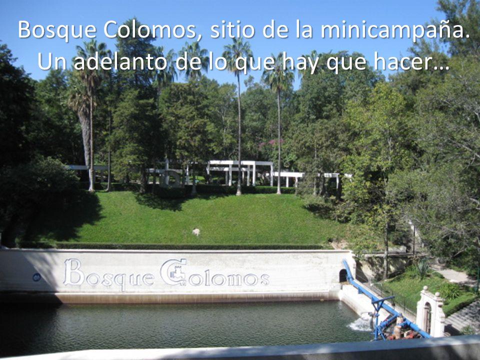 Bosque Colomos, sitio de la minicampaña. Un adelanto de lo que hay que hacer…