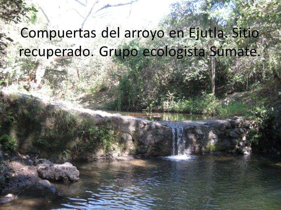 Compuertas del arroyo en Ejutla. Sitio recuperado. Grupo ecologista Súmate.