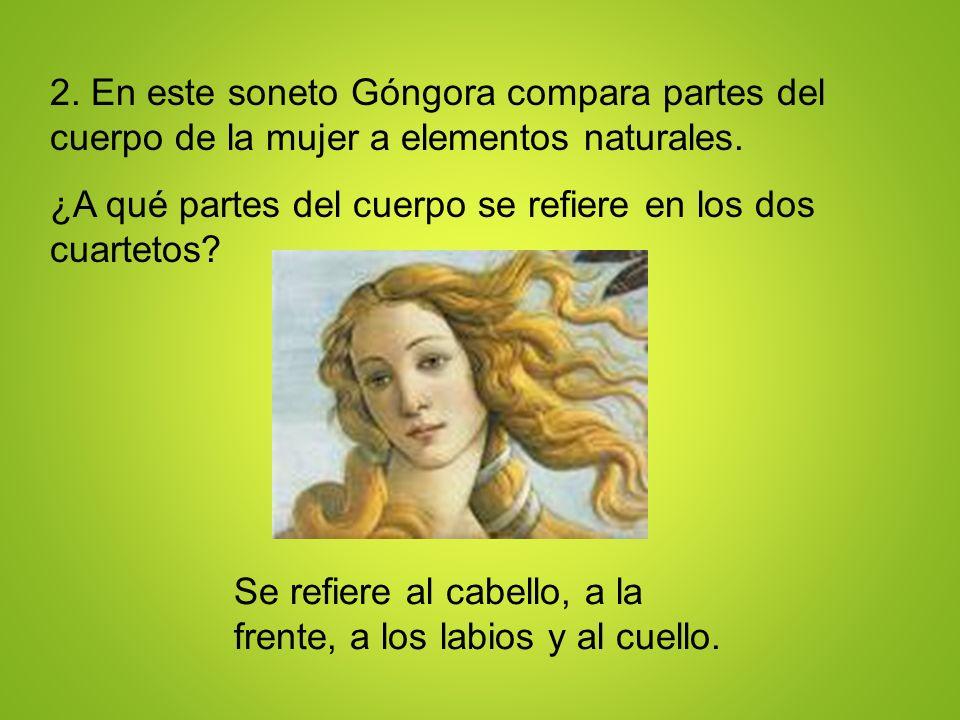 2. En este soneto Góngora compara partes del cuerpo de la mujer a elementos naturales. ¿A qué partes del cuerpo se refiere en los dos cuartetos? Se re