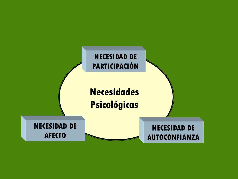 NECESIDAD DE PARTICIPACIÓN NECESIDAD DE AUTOCONFIANZA NECESIDAD DE AFECTO Necesidades Psicológicas