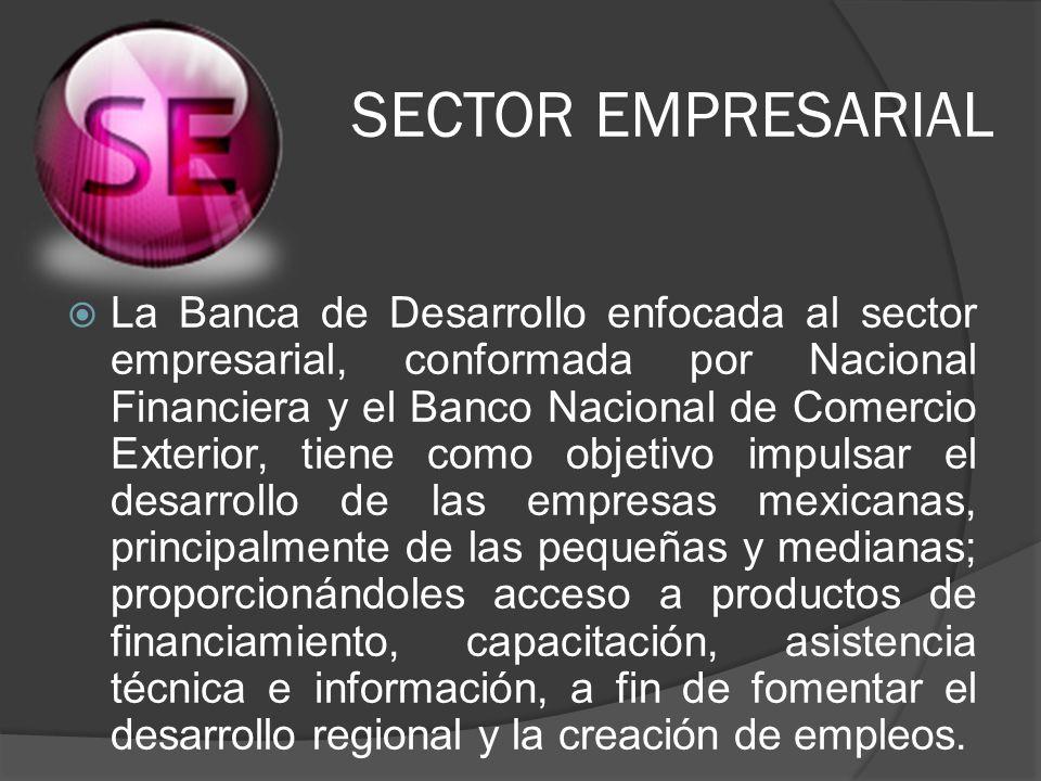 SECTOR EMPRESARIAL La Banca de Desarrollo enfocada al sector empresarial, conformada por Nacional Financiera y el Banco Nacional de Comercio Exterior,