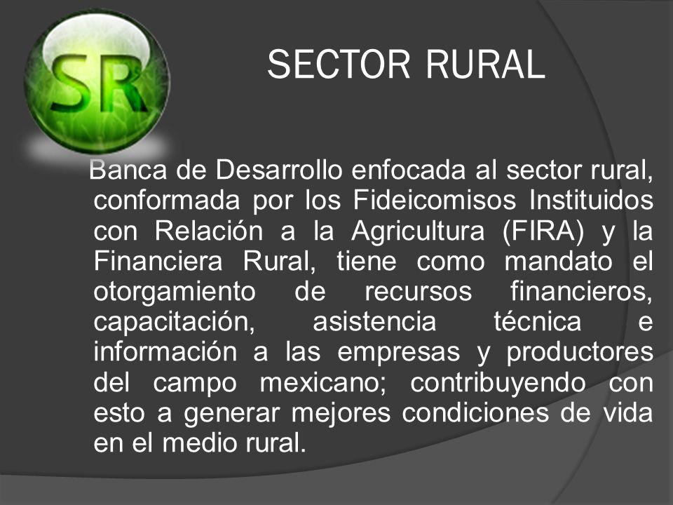 SECTOR RURAL Banca de Desarrollo enfocada al sector rural, conformada por los Fideicomisos Instituidos con Relación a la Agricultura (FIRA) y la Finan