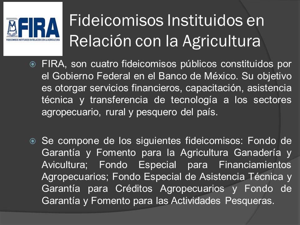 Fideicomisos Instituidos en Relación con la Agricultura FIRA, son cuatro fideicomisos públicos constituidos por el Gobierno Federal en el Banco de Méx