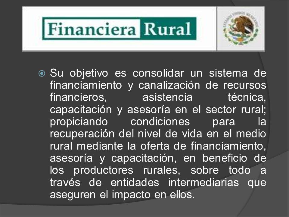 Su objetivo es consolidar un sistema de financiamiento y canalización de recursos financieros, asistencia técnica, capacitación y asesoría en el secto