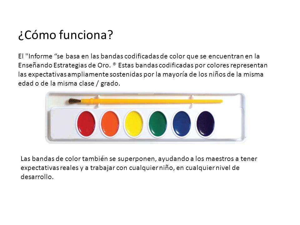 Qué Colores realmente representan las bandas.