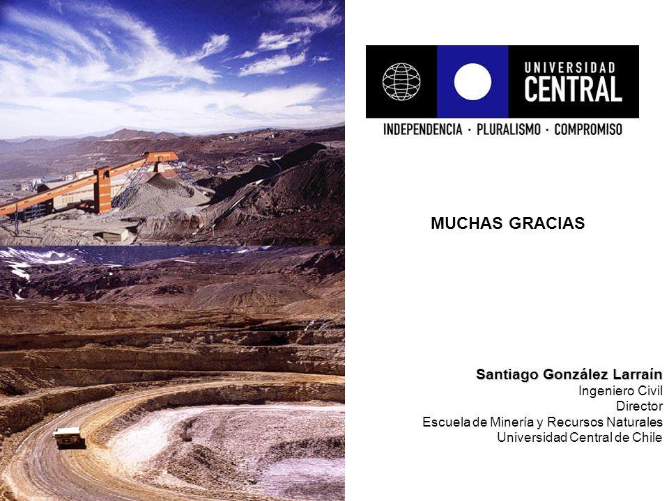 Santiago González Larraín Ingeniero Civil Director Escuela de Minería y Recursos Naturales Universidad Central de Chile MUCHAS GRACIAS