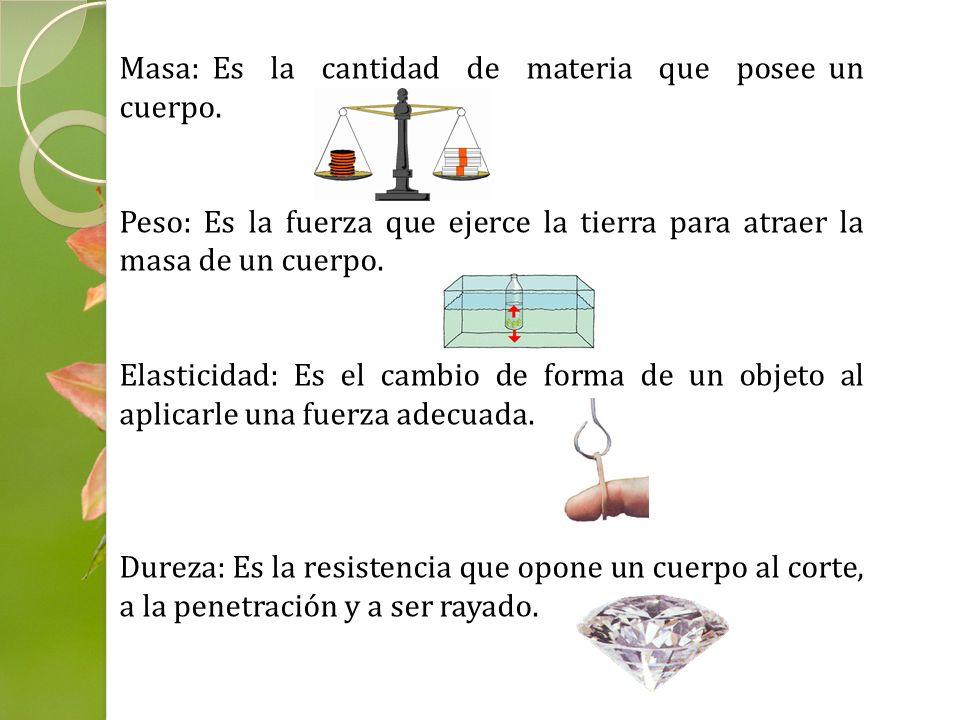 Masa: Es la cantidad de materia que posee un cuerpo. Peso: Es la fuerza que ejerce la tierra para atraer la masa de un cuerpo. Elasticidad: Es el camb