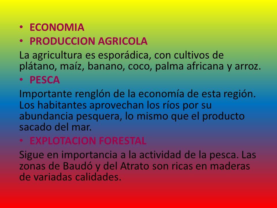 ECONOMIA PRODUCCION AGRICOLA La agricultura es esporádica, con cultivos de plátano, maíz, banano, coco, palma africana y arroz. PESCA Importante rengl