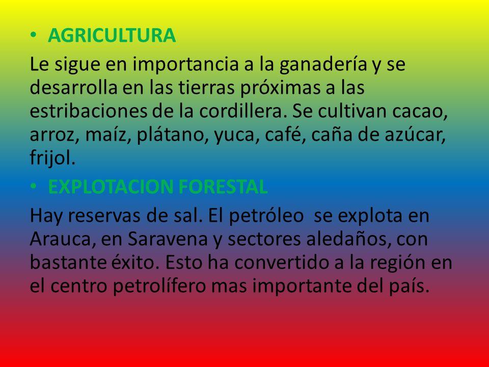 AGRICULTURA Le sigue en importancia a la ganadería y se desarrolla en las tierras próximas a las estribaciones de la cordillera. Se cultivan cacao, ar