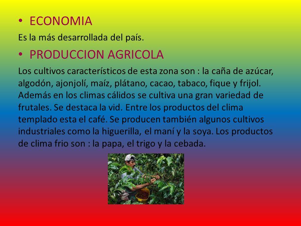 ECONOMIA Es la más desarrollada del país. PRODUCCION AGRICOLA Los cultivos característicos de esta zona son : la caña de azúcar, algodón, ajonjolí, ma