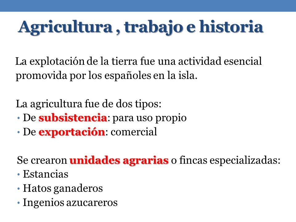 Agricultura, trabajo e historia La explotación de la tierra fue una actividad esencial promovida por los españoles en la isla. La agricultura fue de d