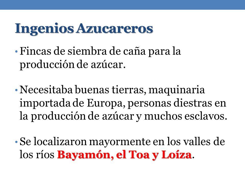 Ingenios Azucareros Fincas de siembra de caña para la producción de azúcar. Necesitaba buenas tierras, maquinaria importada de Europa, personas diestr