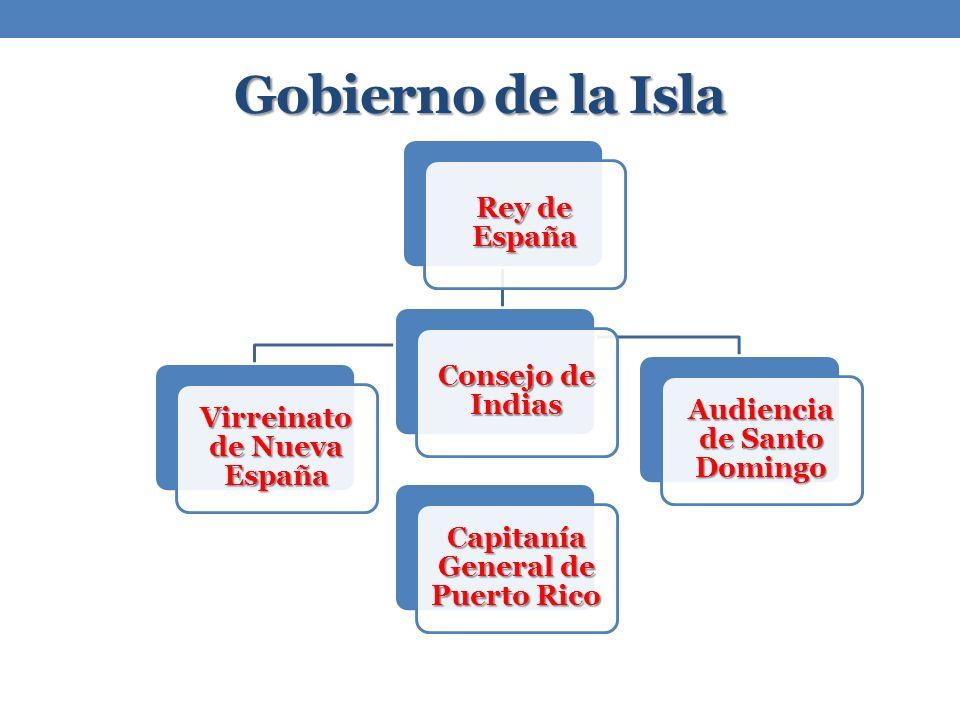 Gobierno de la Isla Consejo de Indias Rey de España Virreinato de Nueva España Capitanía General de Puerto Rico Audiencia de Santo Domingo