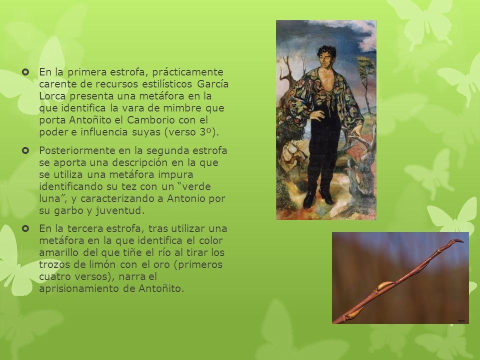 En la primera estrofa, prácticamente carente de recursos estilísticos García Lorca presenta una metáfora en la que identifica la vara de mimbre que po
