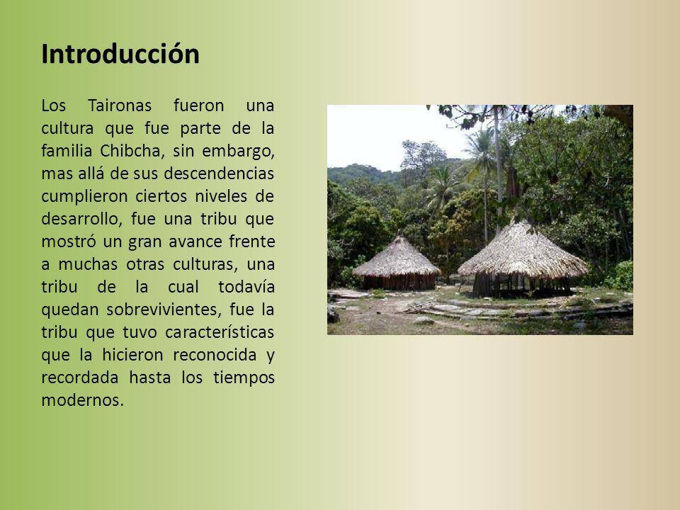 Introducción Los Taironas fueron una cultura que fue parte de la familia Chibcha, sin embargo, mas allá de sus descendencias cumplieron ciertos niveles de desarrollo, fue una tribu que mostró un gran avance frente a muchas otras culturas, una tribu de la cual todavía quedan sobrevivientes, fue la tribu que tuvo características que la hicieron reconocida y recordada hasta los tiempos modernos.