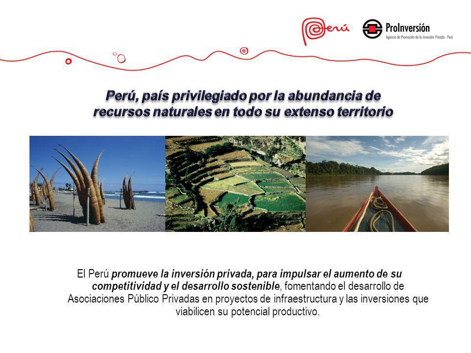 El Perú promueve la inversión privada, para impulsar el aumento de su competitividad y el desarrollo sostenible, fomentando el desarrollo de Asociacio