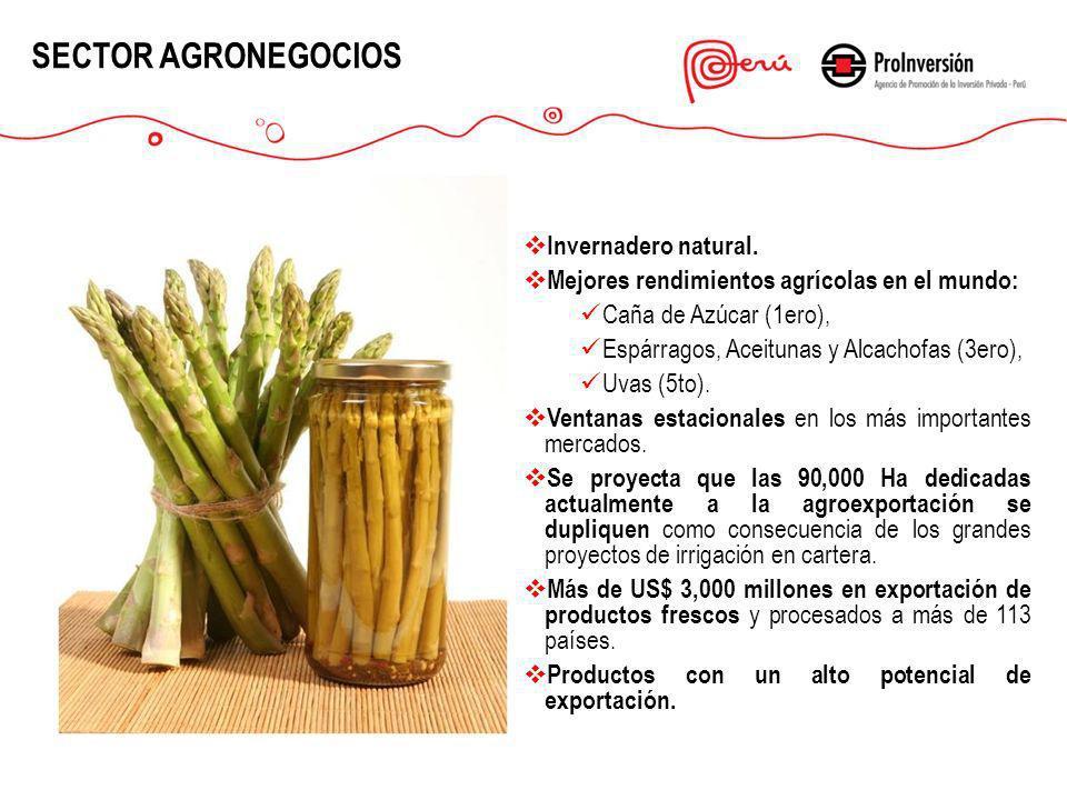 Invernadero natural. Mejores rendimientos agrícolas en el mundo: Caña de Azúcar (1ero), Espárragos, Aceitunas y Alcachofas (3ero), Uvas (5to). Ventana