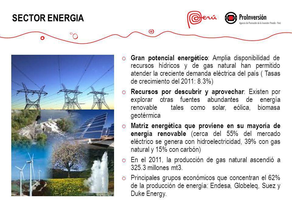 SECTOR ENERGIA o Gran potencial energético : Amplia disponibilidad de recursos hídricos y de gas natural han permitido atender la creciente demanda el