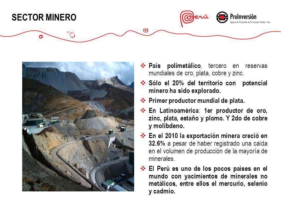 SECTOR MINERO País polimetálico, tercero en reservas mundiales de oro, plata, cobre y zinc. Sólo el 20% del territorio con potencial minero ha sido ex