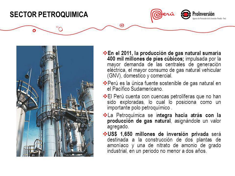 SECTOR PETROQUIMICA En el 2011, la producción de gas natural sumaría 400 mil millones de píes cúbicos; impulsada por la mayor demanda de las centrales