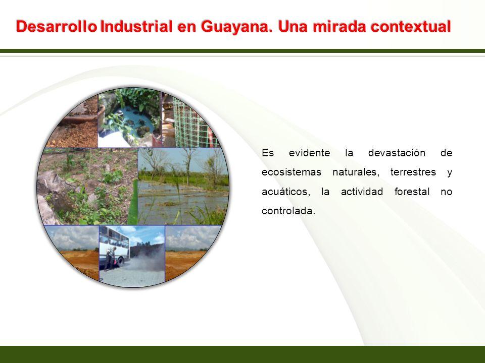 Page 12 Desarrollo Industrial en Guayana. Una mirada contextual Es evidente la devastación de ecosistemas naturales, terrestres y acuáticos, la activi