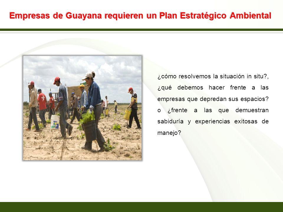 Page 16 Empresas de Guayana requieren un Plan Estratégico Ambiental ¿cómo resolvemos la situación in situ?, ¿qué debemos hacer frente a las empresas q