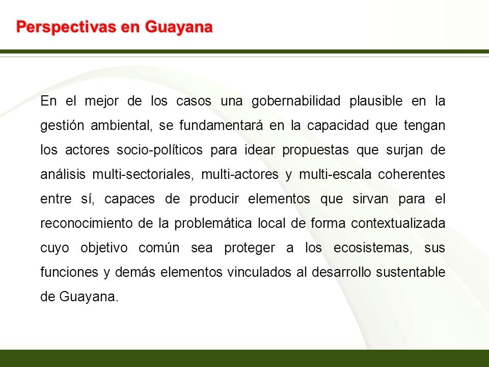 Page 18 Perspectivas en Guayana En el mejor de los casos una gobernabilidad plausible en la gestión ambiental, se fundamentará en la capacidad que ten