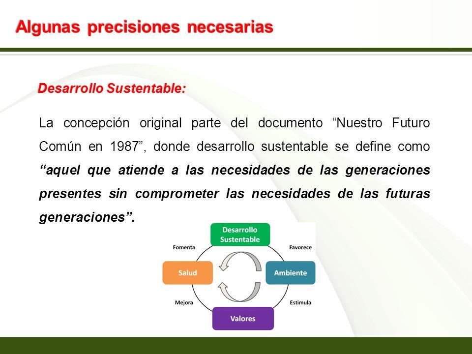 Page 3 Algunas precisiones necesarias Desarrollo Sustentable: La concepción original parte del documento Nuestro Futuro Común en 1987, donde desarroll