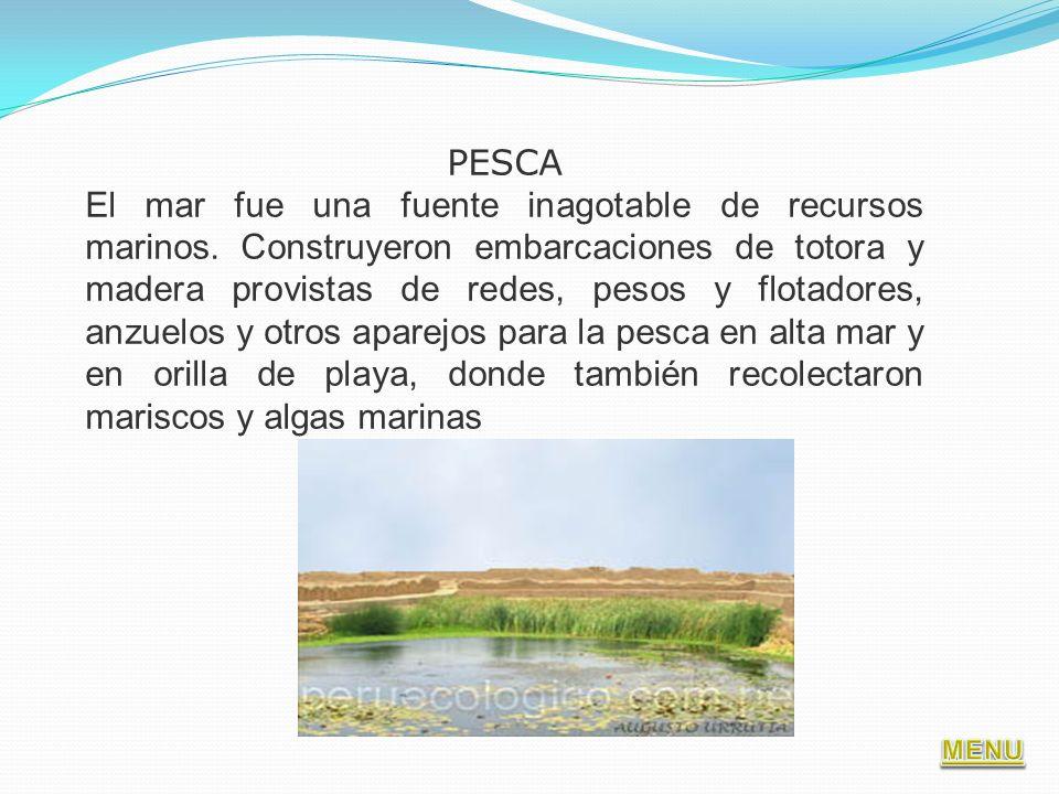 PESCA El mar fue una fuente inagotable de recursos marinos. Construyeron embarcaciones de totora y madera provistas de redes, pesos y flotadores, anzu