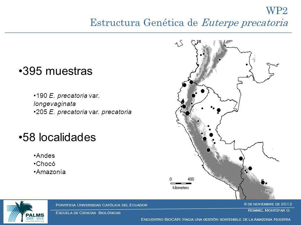 395 muestras 190 E. precatoria var. longevaginata 205 E. precatoria var. precatoria 58 localidades Andes Chocó Amazonía Muestreo WP2 Estructura Genéti