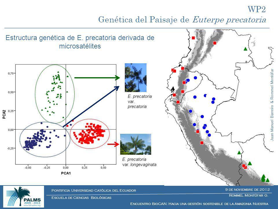 Rommel Montúfar G. Encuentro BioCAN: Hacia una gestión sostenible de la Amazonia Nuestra Escuela de Ciencias Biológicas Pontificia Universidad Católic