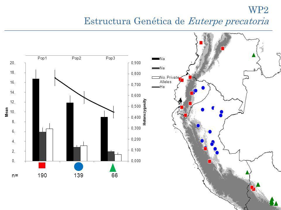 n= 190 139 66 WP2 Estructura Genética de Euterpe precatoria