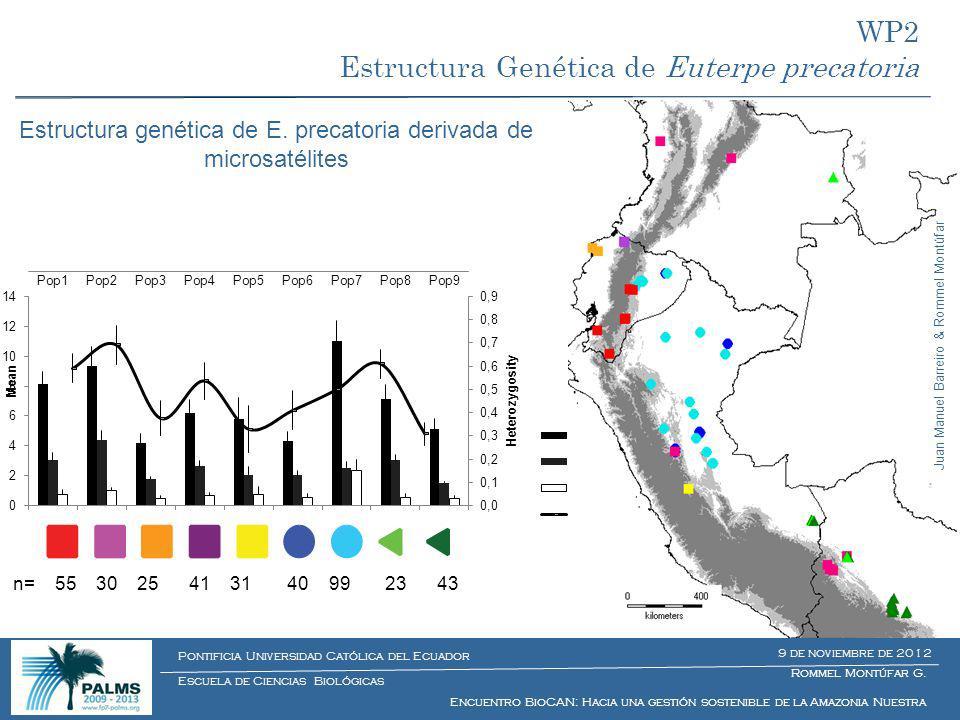 n= 55 30 25 41 31 40 99 23 43 Rommel Montúfar G. Encuentro BioCAN: Hacia una gestión sostenible de la Amazonia Nuestra Escuela de Ciencias Biológicas