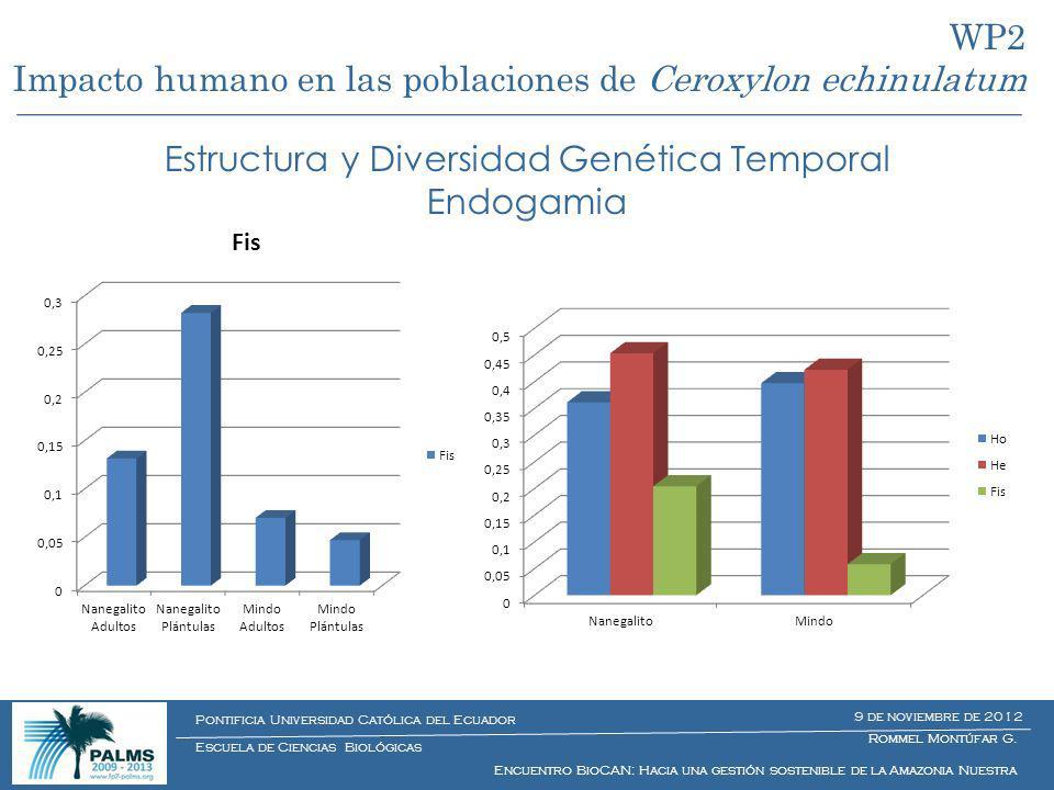 Estructura y Diversidad Genética Temporal Endogamia WP2 Impacto humano en las poblaciones de Ceroxylon echinulatum Rommel Montúfar G. Encuentro BioCAN