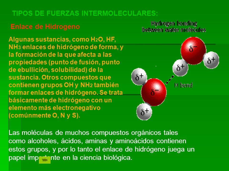 : Enlace de Hidrogeno Las moléculas de muchos compuestos orgánicos tales como alcoholes, ácidos, aminas y aminoácidos contienen estos grupos, y por lo