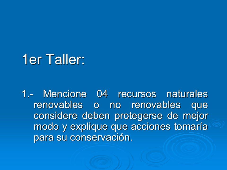 1er Taller: 1.- Mencione 04 recursos naturales renovables o no renovables que considere deben protegerse de mejor modo y explique que acciones tomaría