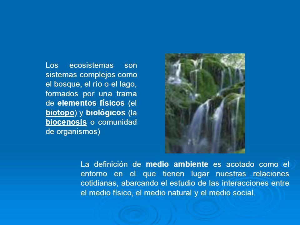 Los ecosistemas son sistemas complejos como el bosque, el río o el lago, formados por una trama de elementos físicos (el biotopo) y biológicos (la bio