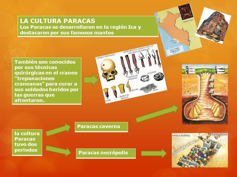 LA CULTURA PARACAS Los Paracas se desarrollaron en la región Ica y destacaron por sus famosos mantos También son conocidos por sus técnicas quirúrgicas en el craneo trepanaciones craneanas para curar a sus soldados heridos por las guerras que afrontaron.
