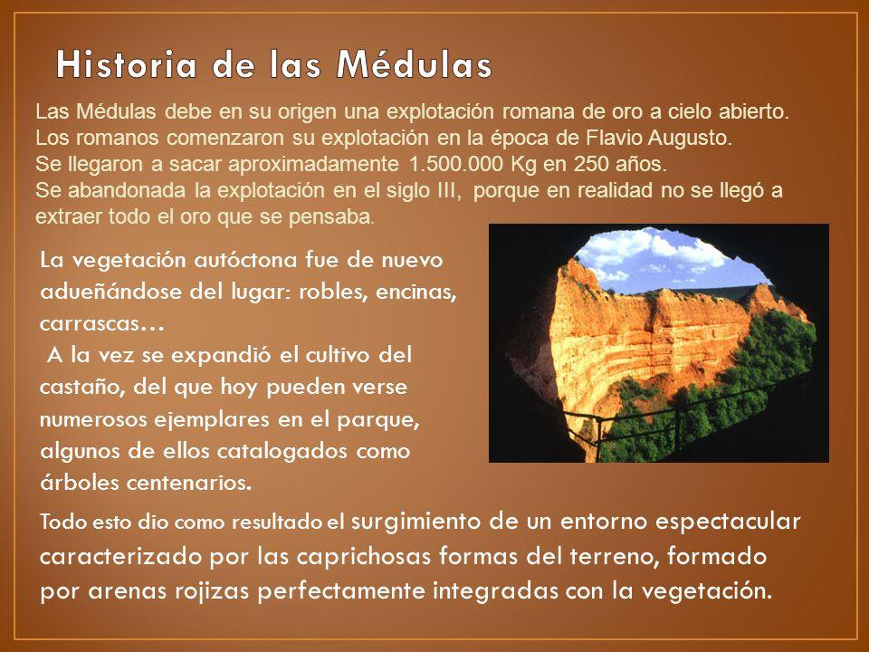 Las Médulas debe en su origen una explotación romana de oro a cielo abierto. Los romanos comenzaron su explotación en la época de Flavio Augusto. Se l