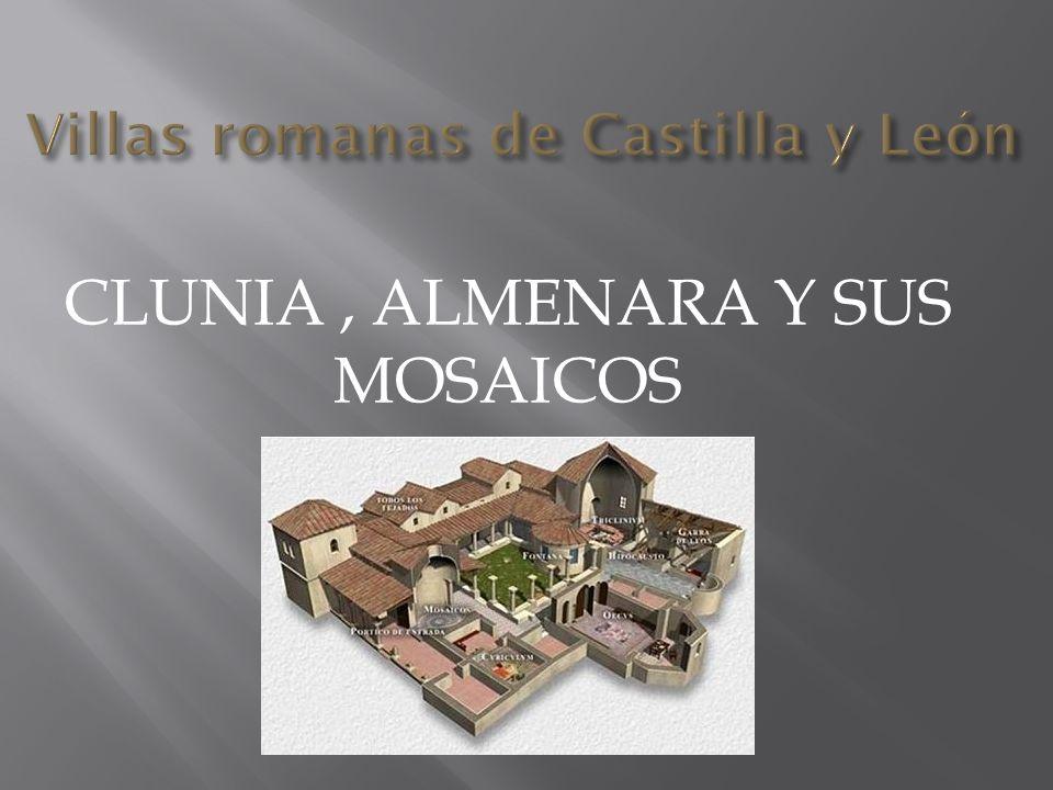 Villas romanas de Castilla y León CLUNIA, ALMENARA Y SUS MOSAICOS