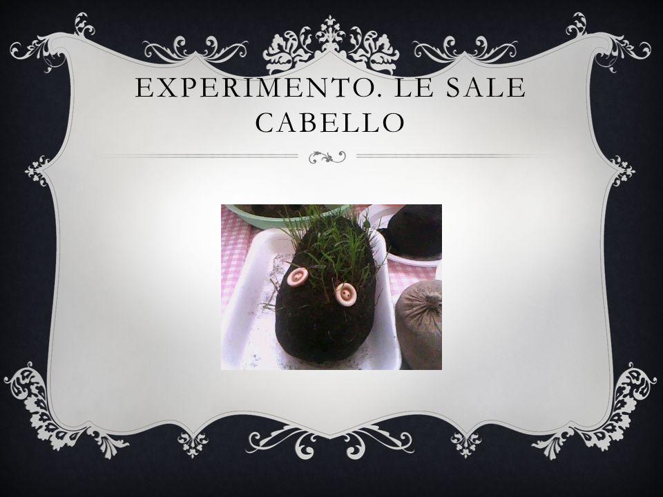 EXPERIMENTO. LE SALE CABELLO