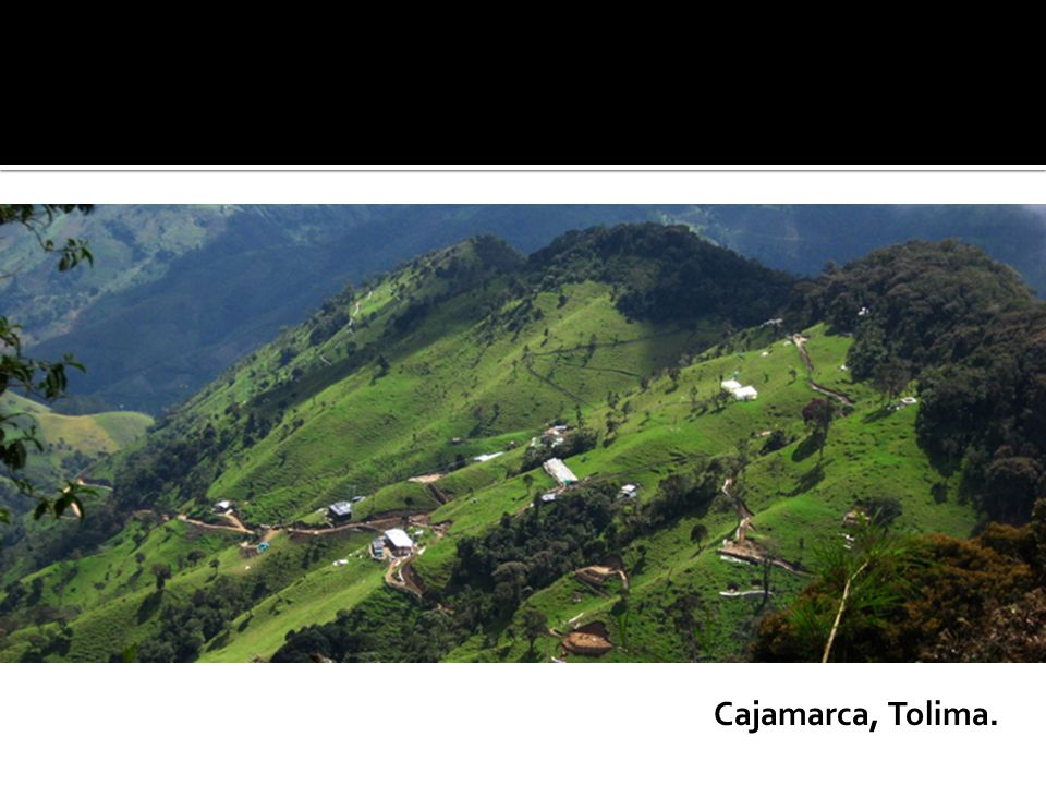 Cajamarca, Tolima.