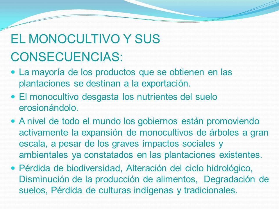 EL MONOCULTIVO Y SUS CONSECUENCIAS: La mayoría de los productos que se obtienen en las plantaciones se destinan a la exportación. El monocultivo desga