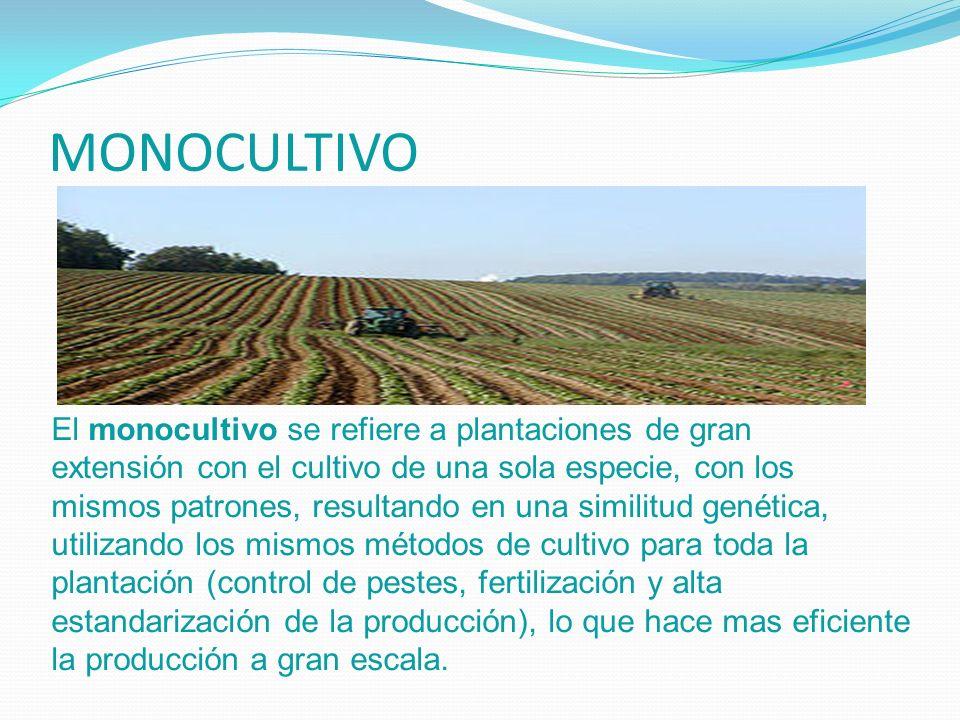 MONOCULTIVO El monocultivo se refiere a plantaciones de gran extensión con el cultivo de una sola especie, con los mismos patrones, resultando en una
