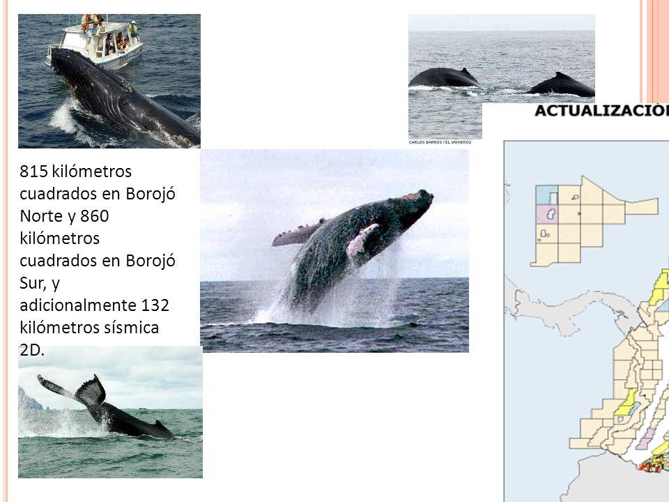 815 kilómetros cuadrados en Borojó Norte y 860 kilómetros cuadrados en Borojó Sur, y adicionalmente 132 kilómetros sísmica 2D.