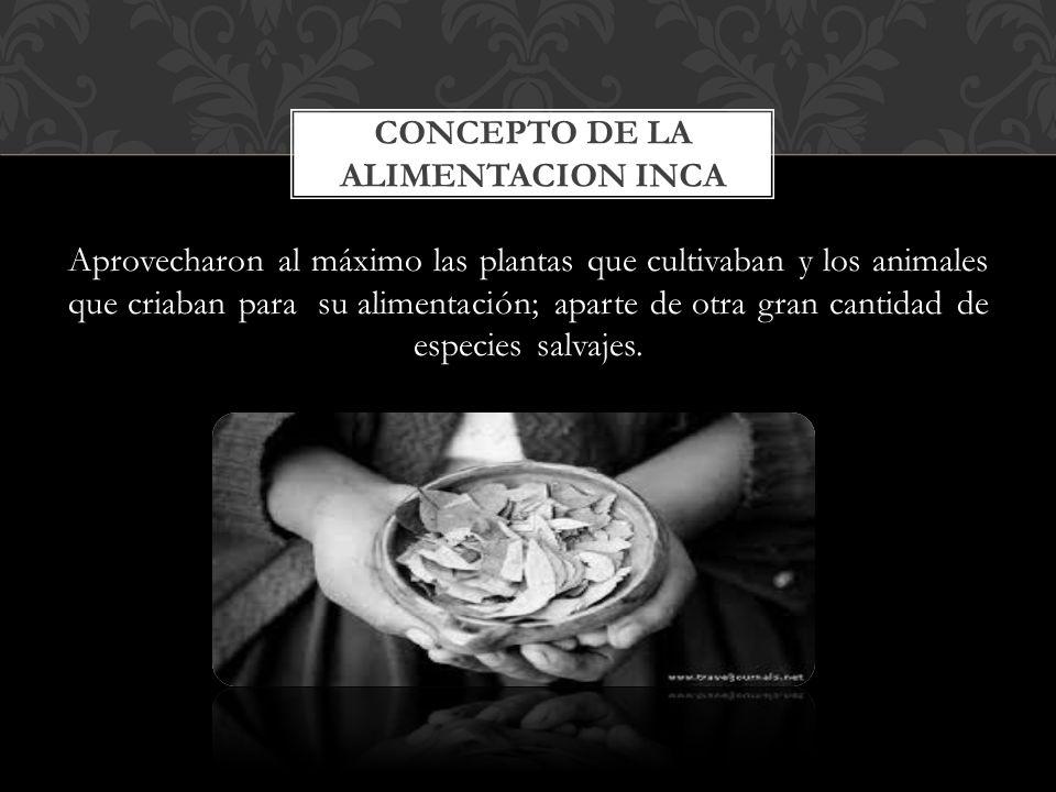 Cultura Paracas, entre otros. TREPANACIONES CRANEANAS