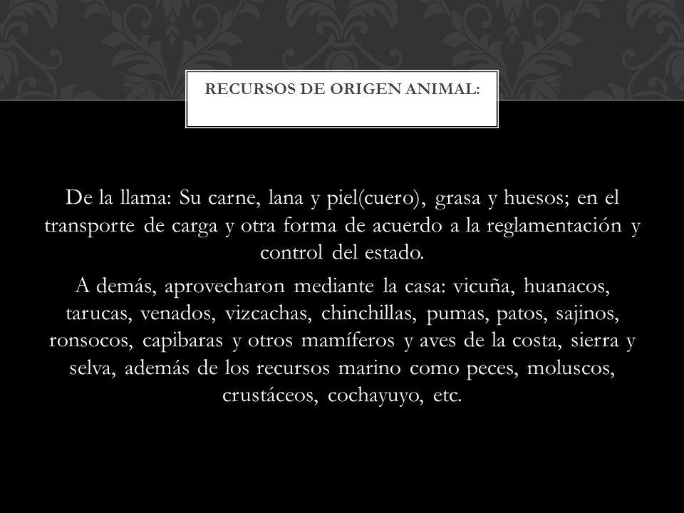 El aporte que recibieron de las culturas pre incas en algunos casos fue superado de acuerdo a los fines políticos de conquista, unificación y el sentido utilitario.